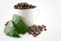 Coffee cup full of coffee beans Stock Photography