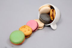 Coffee cup full of macaroon cakes Stock Images