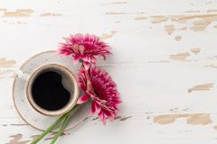 Coffee cup and gerbera flowers Stock Photography