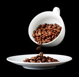 Coffee cup with grain Stock Image