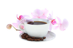 Coffee cup and grains Royalty Free Stock Image