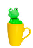 Coffee cup with green frog Stock Photo