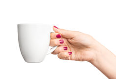 Coffee cup in hand. Blank coffee cup in female hand Royalty Free Stock Image