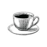 Coffee cup hand drawing engraving stlye.Coffee cup atique style. Coffee cup hand drawing engraving style. Coffee cup antique style Royalty Free Stock Photography