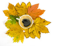 Coffee cup inbetween autumn leaves. Coffee cup standing on colorful autumn leaves Stock Photo