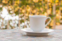 Coffee cup in the morning. Royalty Free Stock Image