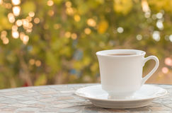 Coffee cup in the morning. Royalty Free Stock Photos