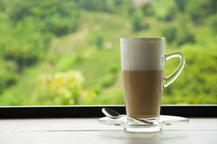 Coffee cup on natural green Royalty Free Stock Photography