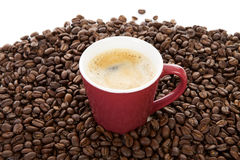 Coffee cup in pile of roasted beans Royalty Free Stock Photo