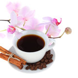 Coffee cup and pink orchid Stock Image