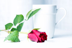 Coffee cup and rose Royalty Free Stock Photos
