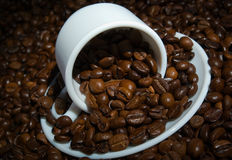 Coffee cup and saucer on coffee bean's heap Stock Image