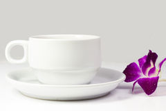 Coffee cup and saucer on a white background. Royalty Free Stock Photography