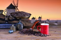 Coffee cup with scale and coffee beans. Stock Images