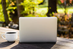 Coffee Cup and Silver Laptop on Picnic Table Royalty Free Stock Photos