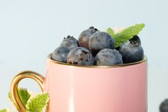 Coffee cup stuffed with blueberries. Pink coffee cup over aqua paper background full of blueberries and mint leaves Royalty Free Stock Image