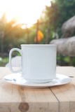 Coffee cup on table  with sunlight. Stock Photo