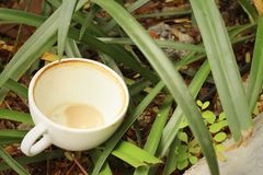 Coffee cup is then used on a green grass background. Royalty Free Stock Photos