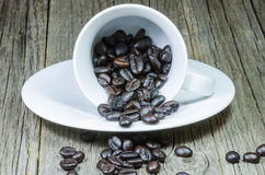 Coffee cup whit roasted beens Royalty Free Stock Photography