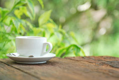 Coffee cup on wood table with green background Royalty Free Stock Images