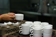 Coffee cups. Coffe cups at banquet (focus on the cup royalty free stock photography
