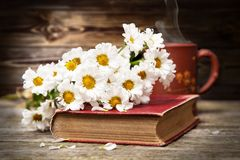 Coffee, daisies and a book Stock Photo
