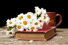 Coffee, daisies and a book Royalty Free Stock Image