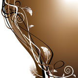 Coffee design vector Royalty Free Stock Images