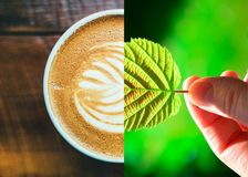 Coffee, Drink, Latte, Coffee Cup royalty free stock images