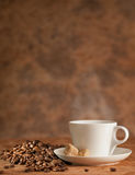 Coffee and dry roasted beans Royalty Free Stock Image
