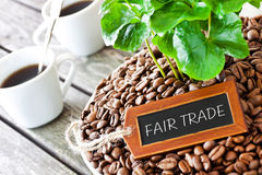 Coffee - Fair trade Royalty Free Stock Photo