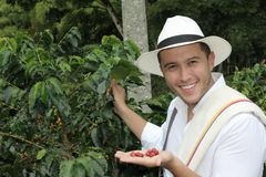 Coffee farmer in the fields.  stock photography