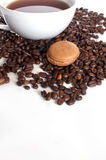 Coffee flavored macaroon cookie Stock Photo