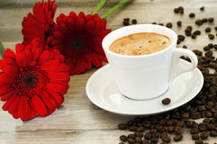 Coffee flavored. Near flowers Royalty Free Stock Photo