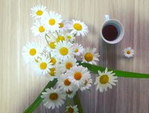 Coffee and flowers royalty free stock image