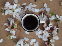 Coffee and flowers royalty free stock photo