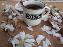 Coffee and flowers Stock Photography