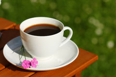 Coffee in garden Stock Images