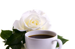 Coffee gentle morning rose Royalty Free Stock Photos