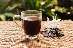 Coffee in glass trasparent cup and bean Stock Images
