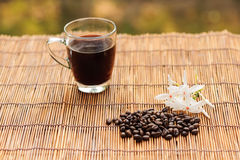 Coffee in glass trasparent cup and bean Stock Photo