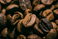 Coffee. Good background photo consisting of coffee Royalty Free Stock Image