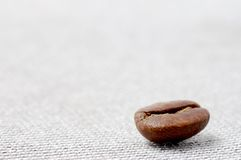 Coffee grain Royalty Free Stock Photo