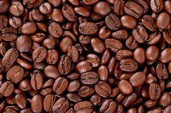 Coffee grain texture royalty free stock photography