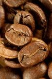 Coffee grains. Perfect grains of magnificent invigorating coffee Stock Image