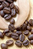 Coffee grains. Perfect grains of magnificent invigorating coffee Royalty Free Stock Photo