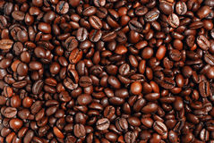 Coffee grains Royalty Free Stock Image