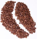 Coffee grains, Stock Photo