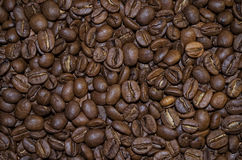 Coffee grains. A background from a great number of coffee grains Stock Photo