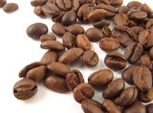 Coffee grains Stock Images